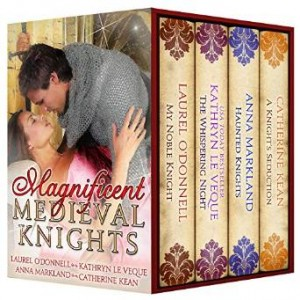 magnicent medieval knights